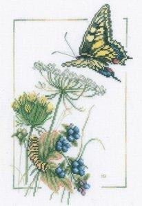 Lanarte Blueberry Butterfly