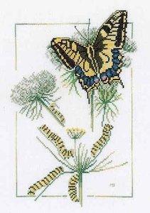 Lanarte From Caterpillar to Butterfly